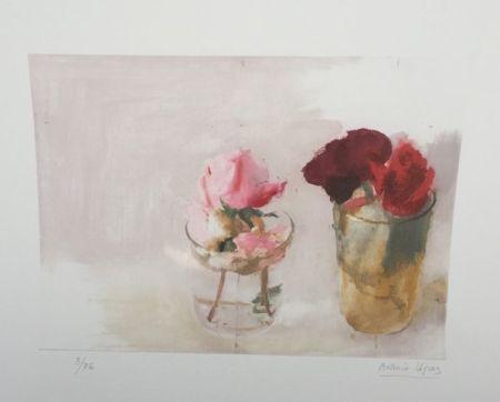 Eau-Forte Lopez - Rosas de Invierno