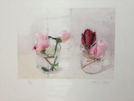 Gravure Lopez - Rosas de invierno I