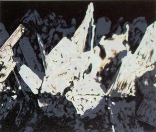 Lithographie Alexander - Sans titre