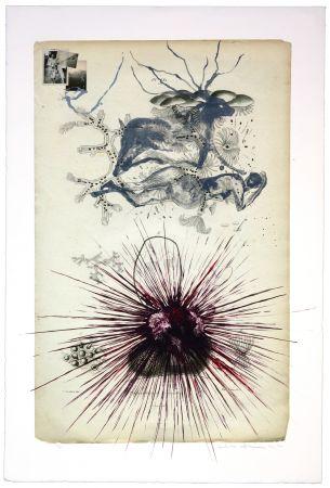 Lithographie Olguin - Sans titre