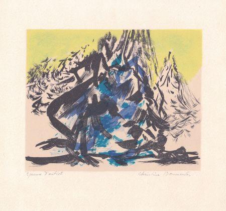 Lithographie Boumeester - Sans titre [Montagne]