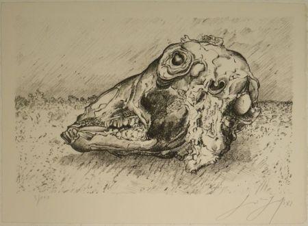 Lithographie Grass - Schafskopf.