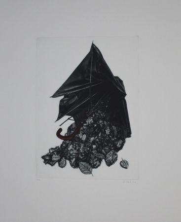 Manière Noire Ebert - Schirm und Blättern