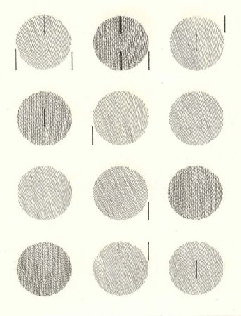 Livre Illustré Nangeroni - Sei poesie per un romanzo