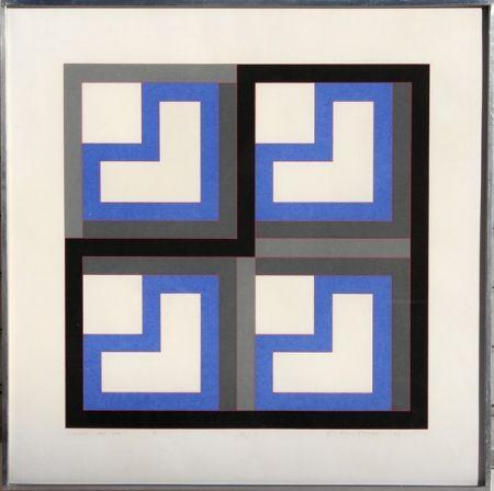 Sérigraphie House - Series 40