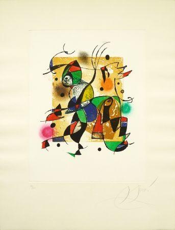 Gravure Miró - Series Gaudi 41