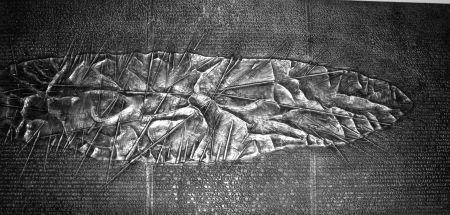 Livre Illustré Pomodoro - Sette frammenti da l'Arte dell'uomo primordiale