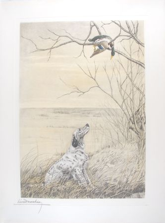 Gravure Danchin - Setter et Canard branche - English Setter and Duck in a tree (Original)