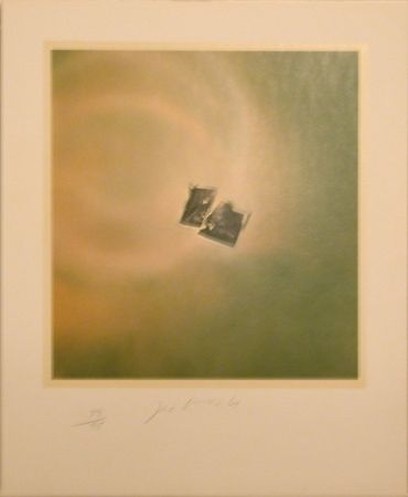 Lithographie Goode - Six Lithographs (torn photo on green background)