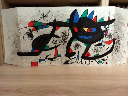 Livre Illustré Miró - Sobreteixims