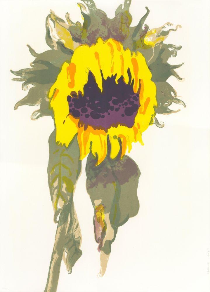 Lithographie Pétrovitch - Soleil