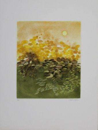 Eau-Forte Et Aquatinte Walker - Soleil / Sun