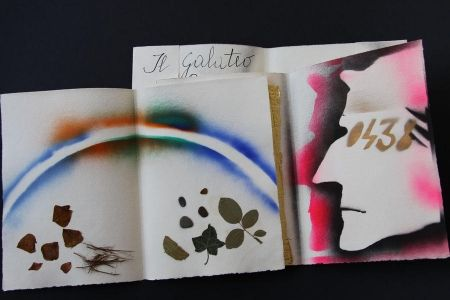 Livre Illustré Fioroni - Sonetto Di Veti E Iridi