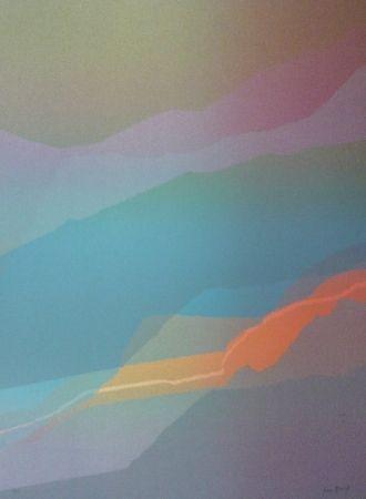 Lithographie Bird - Spectre lumière 3
