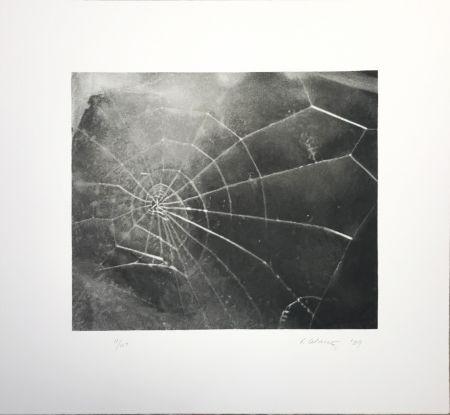 Sérigraphie Celmins - Spider Web