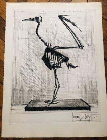 Gravure Buffet - Squelette d'oiseau