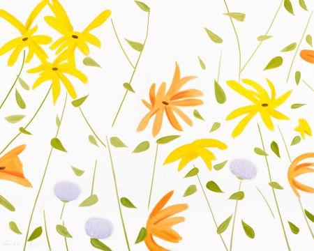 Aucune Technique Katz - Summer Flowers 2