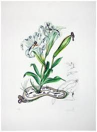 Pointe-Sèche Dali - Surrealistic Flowers, 540, Lilium longiflorum vel tempus