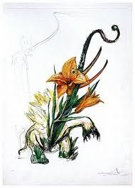 Pointe-Sèche Dali - Surrealistic Flowers, 545, Hemerocallis thumbergii elephanter furiosa