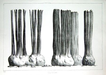 Lithographie Lionni - Taluma trillosa