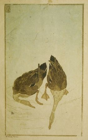 Gravure Sur Bois Klemm - Tauchende Enten (Diving Ducks)
