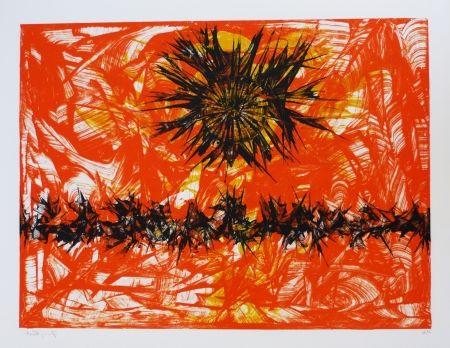 Lithographie Ernst - Terra Incognita 12