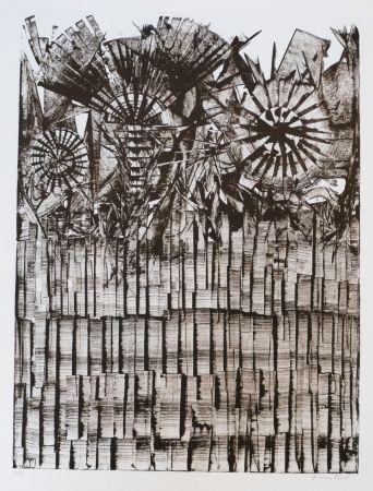 Lithographie Ernst - Terra Incognita 9