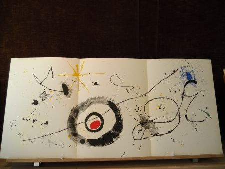 Livre Illustré Miró - Terres de grand feu