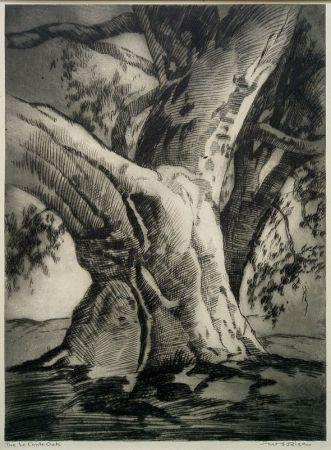Pointe-Sèche Rice - The Le Conte Oak