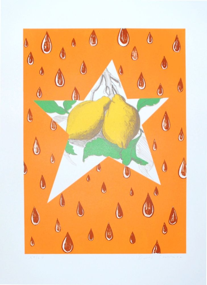 Lithographie Salle - The Lemon Twig