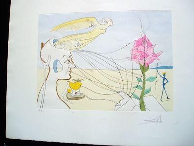 Gravure Dali - The Rose
