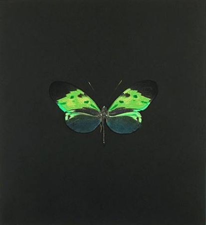 Eau-Forte Hirst - The Souls on Jacob's Ladder Take Their Flight (Small Green)