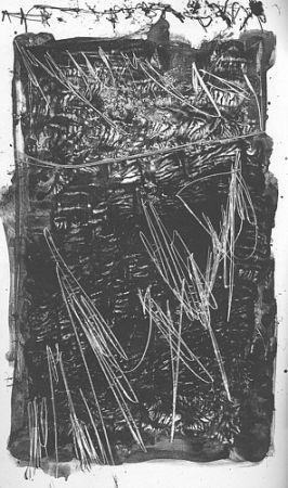 Livre Illustré Perilli - Theatrum Sanitatis