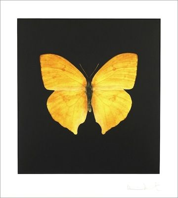 Eau-Forte Hirst - TheSouls on Jacob's Ladder Take Their Flight (Large Yellow)