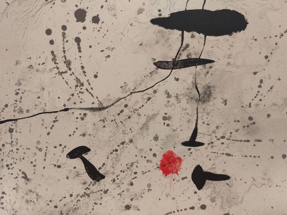 Livre Illustré Miró - Trace Sur l'eau