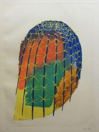 Eau-Forte Et Aquatinte Ray - Transfiguration d'un cactus