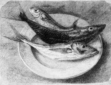 Eau-Forte Mongatti - Tre pesci dell'Adriatico