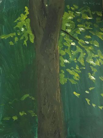 Aucune Technique Katz - Tree