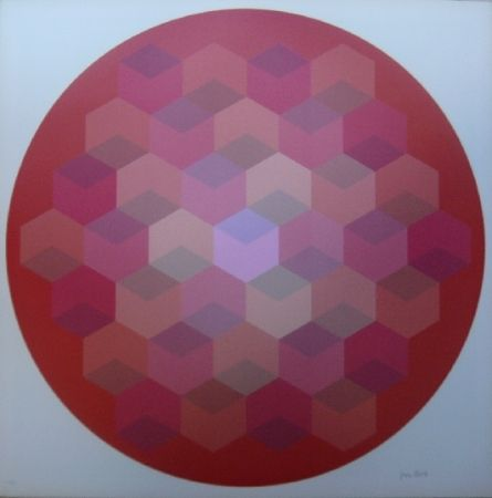 Lithographie Bird - Tribute to Vasarely 8