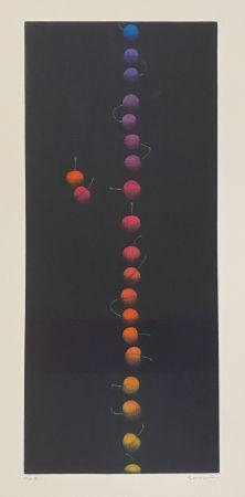 Manière Noire Hamaguchi - Twenty-Two Cherries (multicolor)