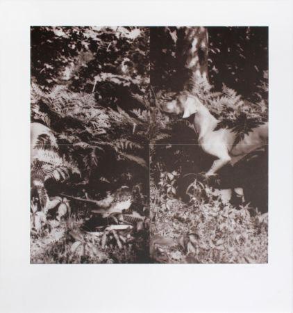 Lithographie Wegman - Untitled
