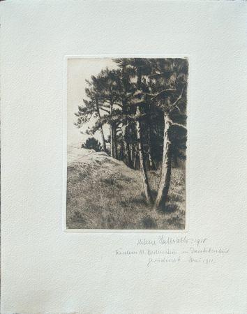 Pointe-Sèche Haasbauer-Wallrath - Untitled (Kiefern am Waldrand)