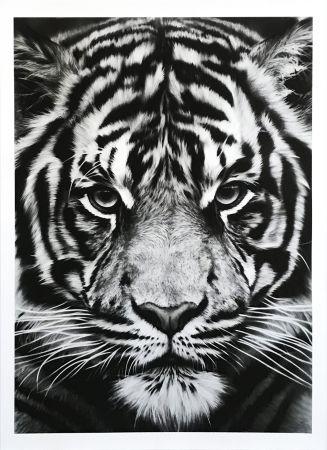 Sérigraphie Longo - Untitled (Tiger)