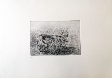Pointe-Sèche Ligabue - Vaccarella con vitello