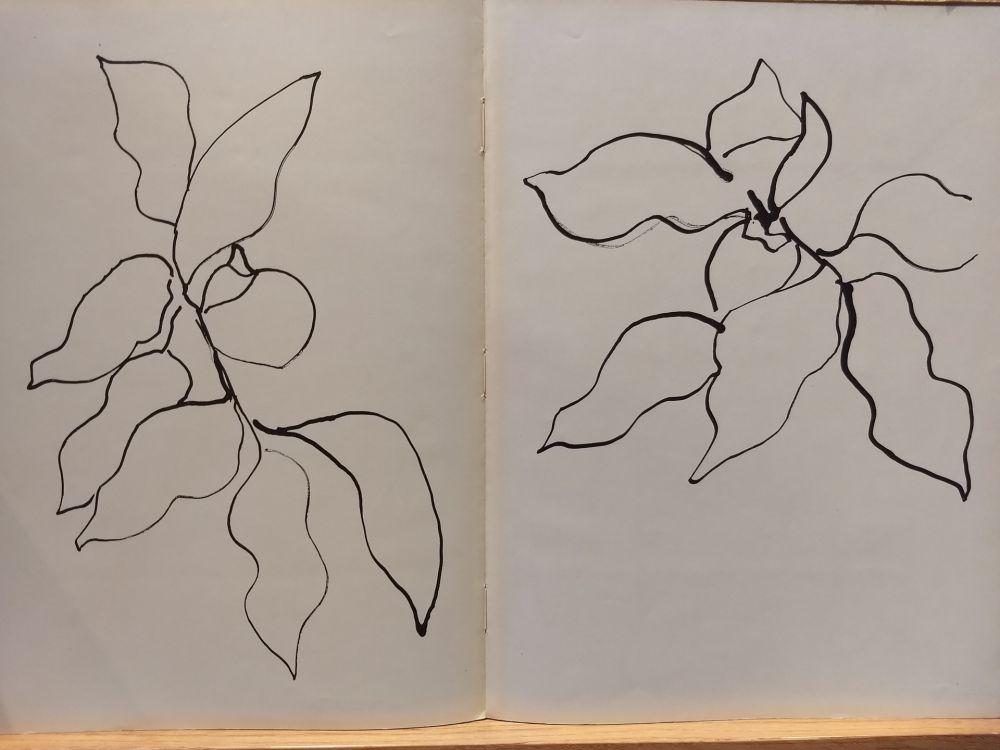 Livre Illustré Matisse - Vence
