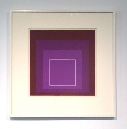 Lithographie Albers - White Line Square, XI