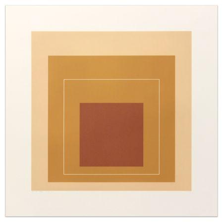 Lithographie Albers - White Lines Square Xvi