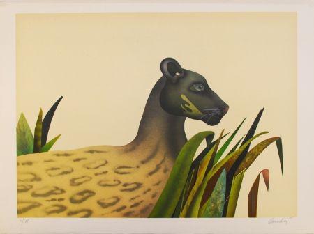Lithographie Donadini - Wildcat