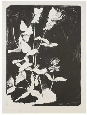 Lithographie Dine - Wildflowers in New York II