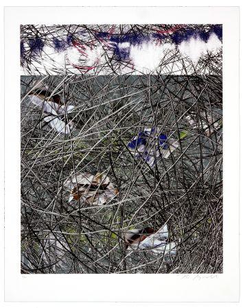 Lithographie Myrvold - Winter Clouds II